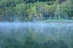 秋の目覚め