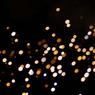 SONY DSLR-A200で撮影した風景(TIMEシャワーに射たれて)の写真(画像)
