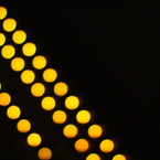SONY DSLR-A200で撮影した風景(DSC00273)の写真(画像)