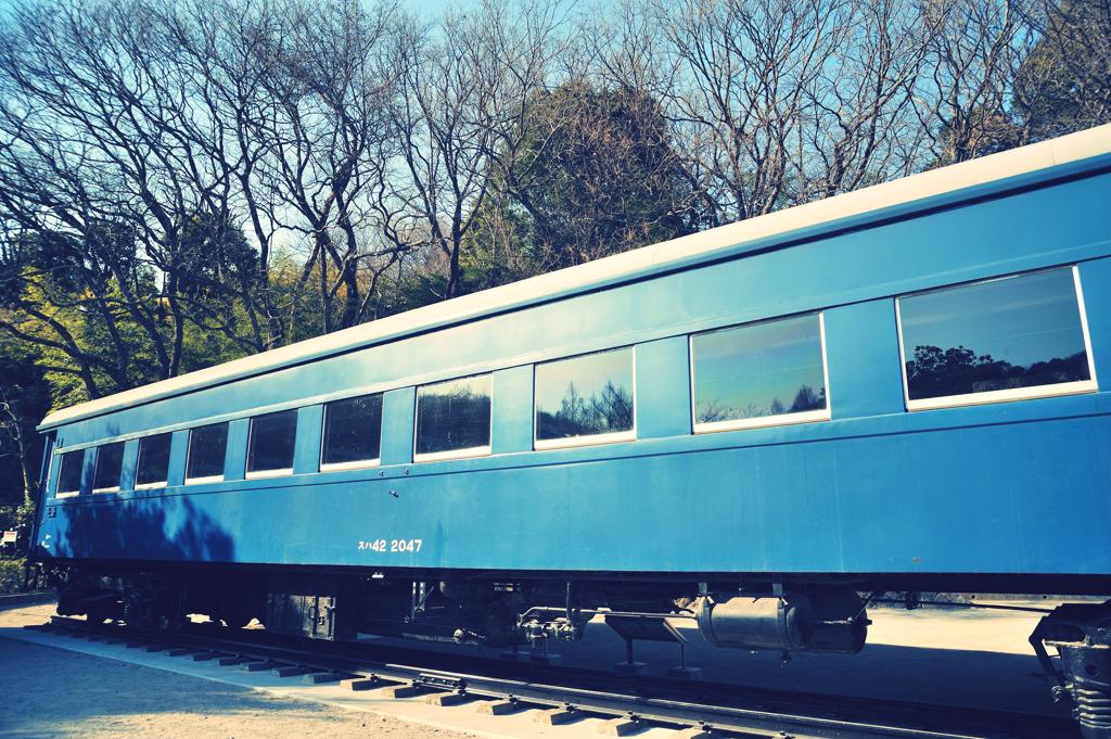 公園から出られない客車