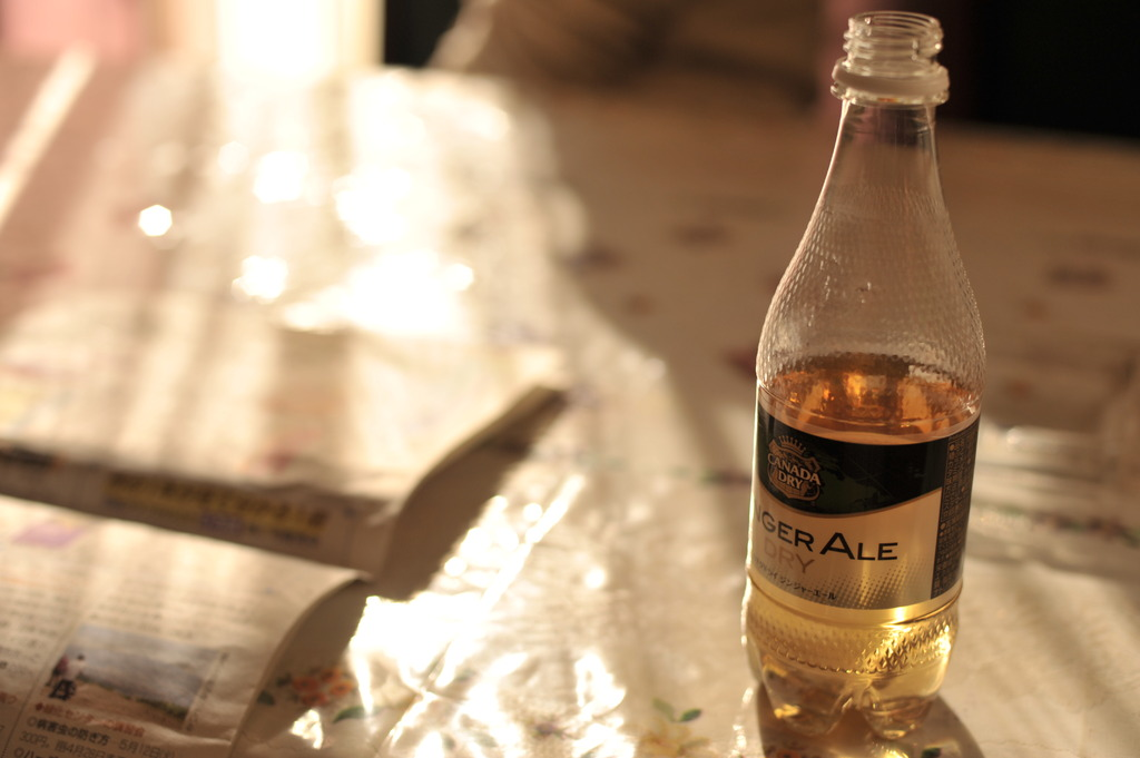 I love Ginger Ale