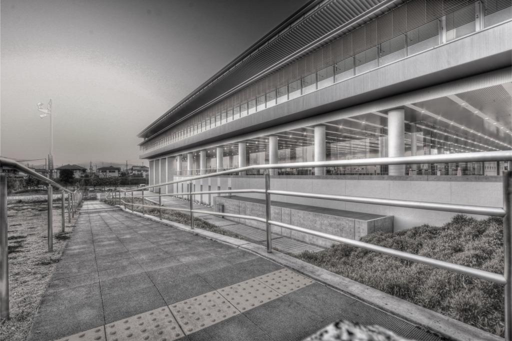library monotone