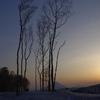 羊蹄山3-0905