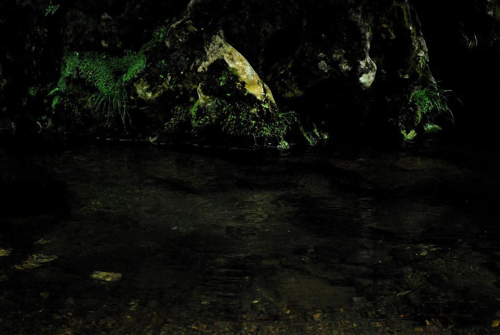 暗闇に光る岩