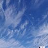 風の強い午後