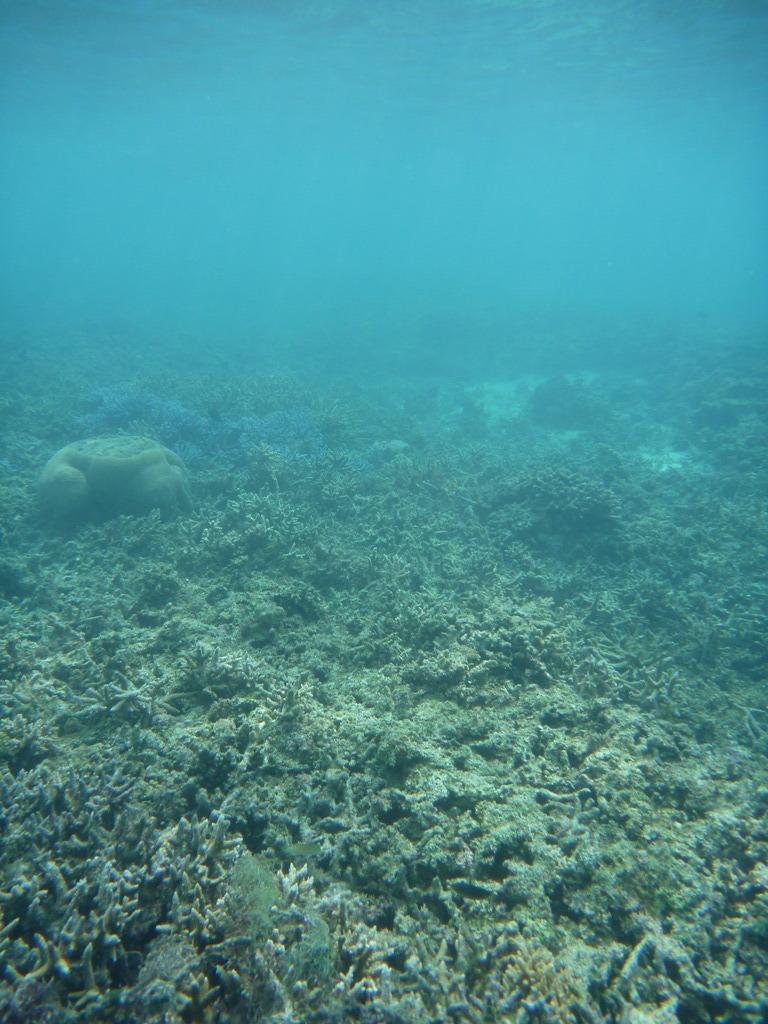 カビラの海