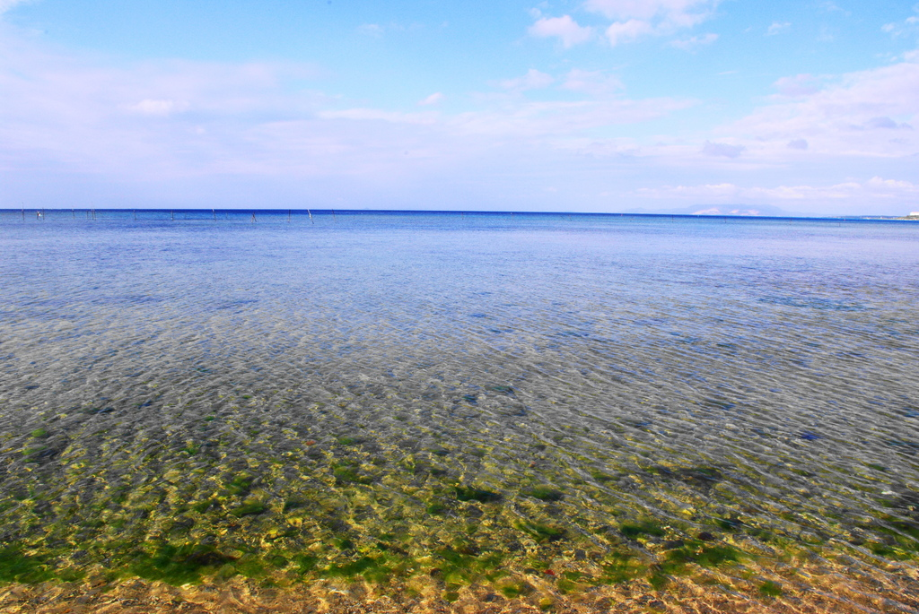 マリブビーチ