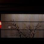 PENTAX PENTAX K-5で撮影した風景(京都スナップ をどりの季節 新橋通)の写真(画像)