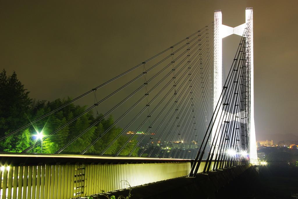 秩父公園橋 黒いハープの弦
