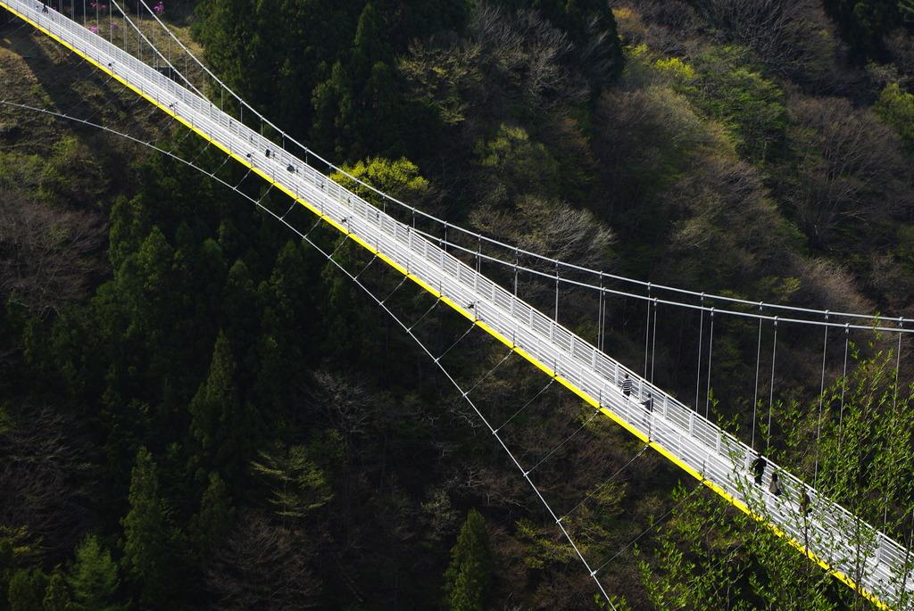 Sky Bridge(・・)yellow line
