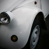 curved white II
