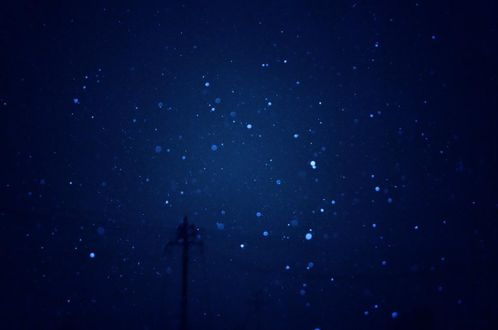 雪の降る夢