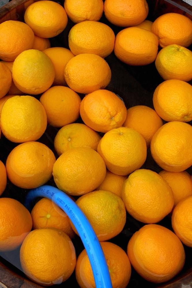 Radiant Orange