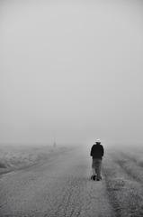朝霧を往く