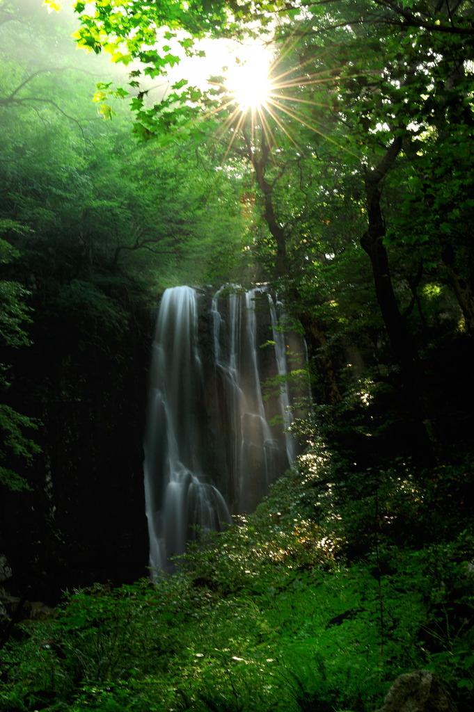 不動の滝の朝