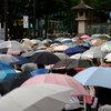 傘、傘、傘・・・