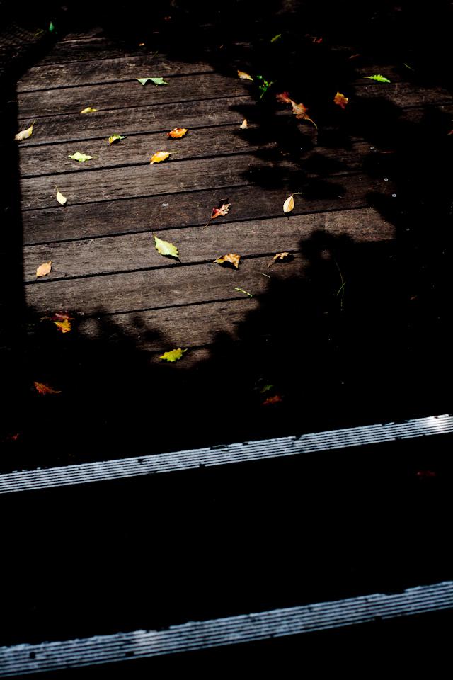 落ちた先の光と影