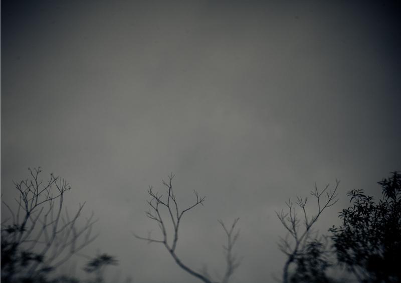 俺の空-0809