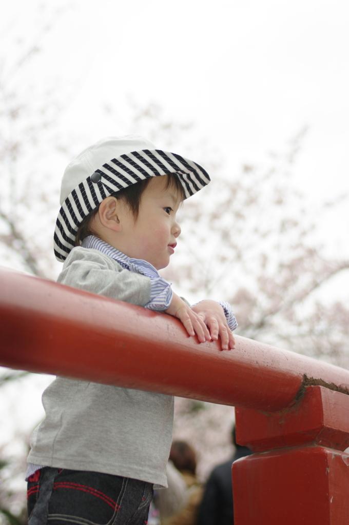 桜舞う橋の上で・・・