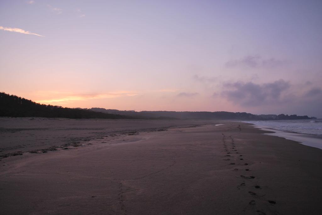 海岸での夕日