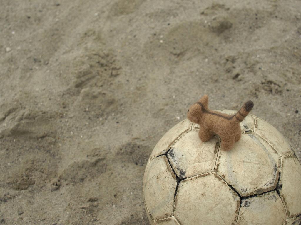 ねえさん、サッカーやろうよ♪