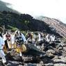 PANASONIC DMC-FX100で撮影した(富士山アタック黒鳥隊。100723-163303)の写真(画像)