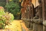 物想いにふける秋