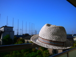 息子の帽子