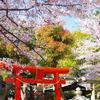 神戸北野の春