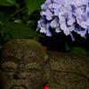 地蔵と紫陽花