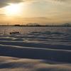 暴風雪の痕