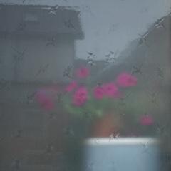 窓、越しにみえるは
