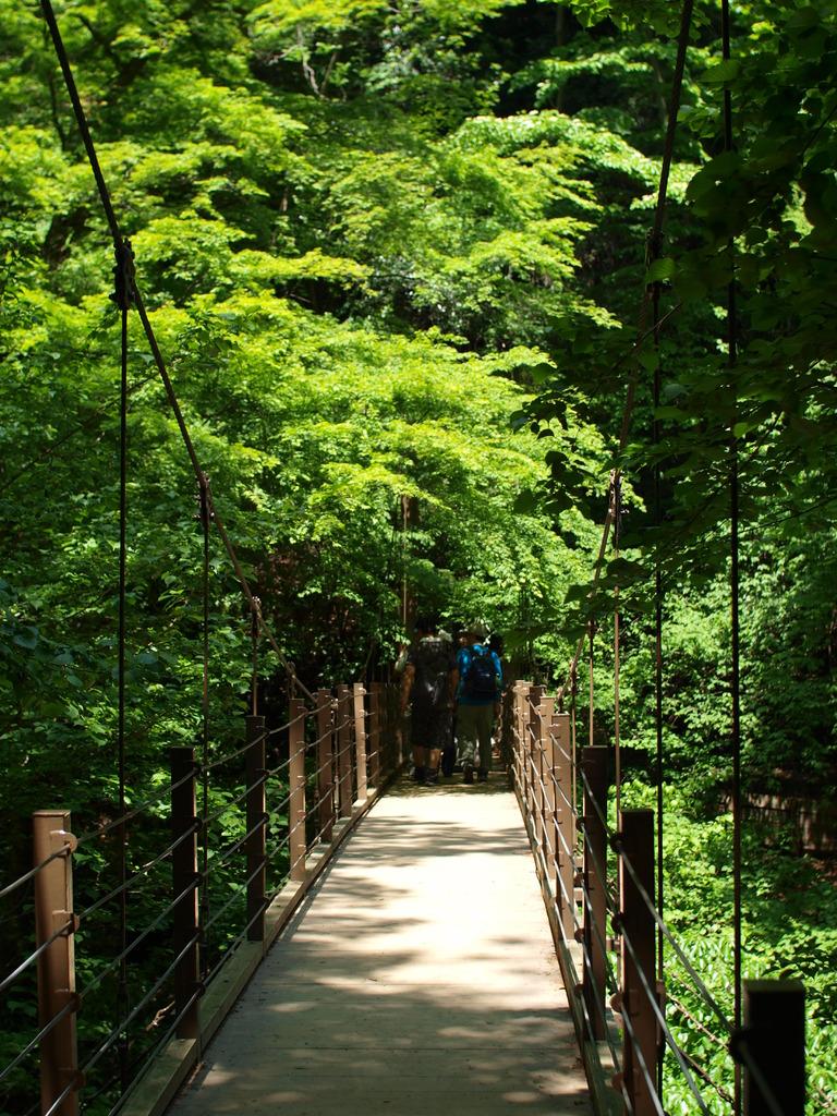 陽だまりの橋