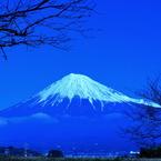 電球富士山