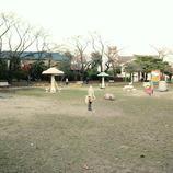 photo348312