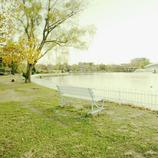 photo349407