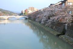浅・野・川