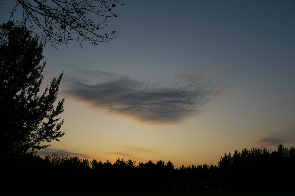 雲が飛んでる(^^ゞ