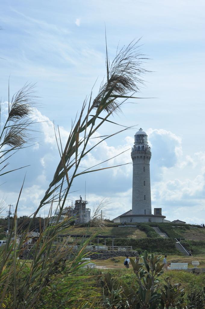 ススキと灯台
