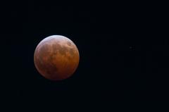 月と惑星の共演