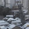 雪化粧の甍群