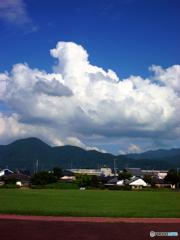 綿毛の子犬、雲に乗る