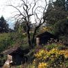 山小屋のある風景