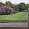 公園にて・・