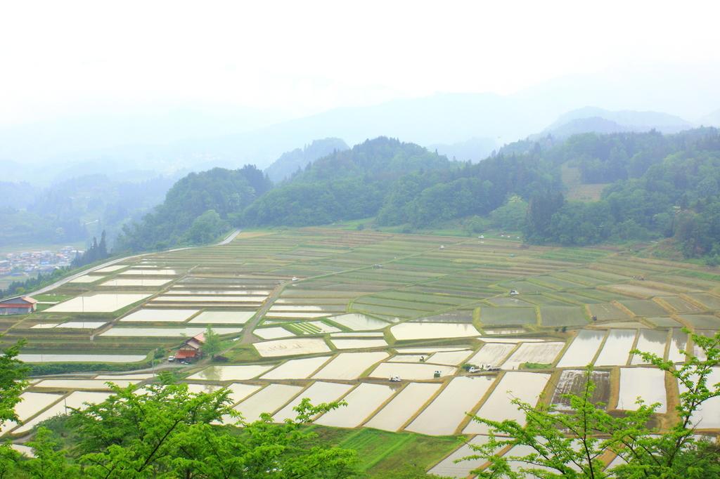 田園 雨の棚田