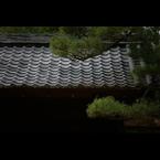 SONY ILCE-7Sで撮影した(秋のぶらり京都 01)の写真(画像)