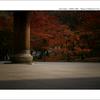 京都 | 秋の旅路  02