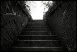光と影の記憶 #05