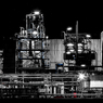 CANON Canon EOS 5D Mark IIIで撮影した(真夜中のダンディー)の写真(画像)