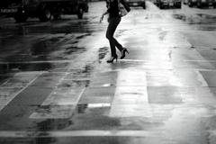 #1486 雨の日